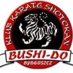Bushi-do CUP